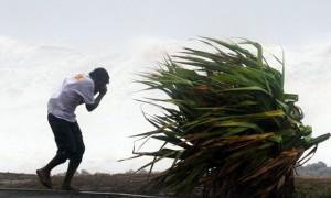 walka z wiatrem