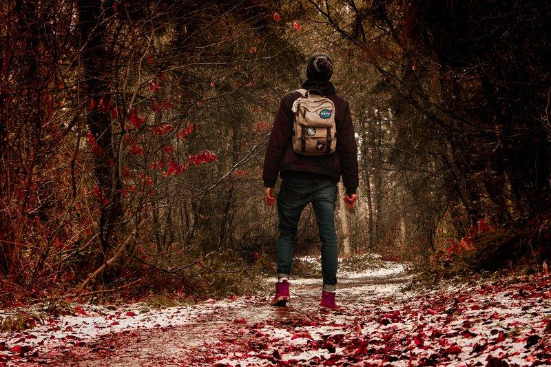 Jesienne spacery i wycieczki pomogą wesprzeć odporność